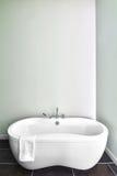 Modernt badrum genom att använda mjuka gröna pastellfärgade färger Royaltyfri Fotografi