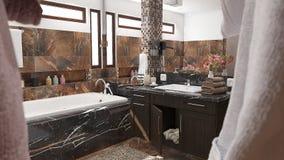 Modernt badrum med bruna tegelplattor och den stora illustrationen för spegel 3D vektor illustrationer