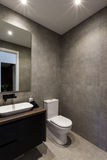 Modernt badrum med en spegel bredvid toaletten royaltyfri bild