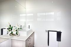 Modernt badrum med en vit blomningväxt med gröna sidor royaltyfri fotografi