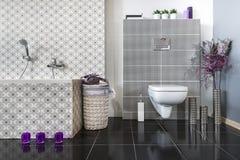 Modernt badrum med WC Fotografering för Bildbyråer