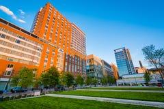 Modernt byggnader och ivrigt parkerar, i Baltimore, Maryland royaltyfri foto