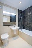 modernt följe för badrumen Royaltyfri Foto