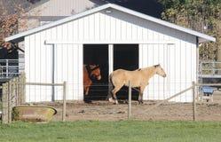 Modernt hästladugård eller stall Arkivfoton