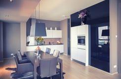 Modernt kök i vardagsrum Fotografering för Bildbyråer