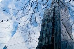Modernt moderiktigt kontor för affärskorporation med den torkade trädfilialen Arkivbilder