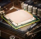 Modernt processor och moderkort Royaltyfri Fotografi