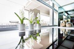 Modernt ugnslut upp bredvid fönstret och blomningväxten arkivbild