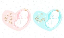 Moderskapillustration bowflicka för 29 buk som isoleras över rosa gravida veckor Det är en pojke Arkivfoton