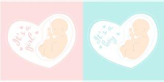 Moderskapillustration bowflicka för 29 buk som isoleras över rosa gravida veckor Det är en pojke Royaltyfria Bilder