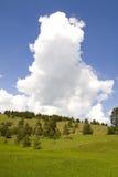 Modes de montagne de Zlatibor Photos libres de droits