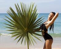 Modeschönheit im Bikini mit Palmenniederlassung Stockfotos