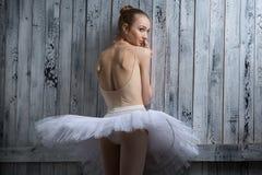 Modest ballerina standing near a wooden wall Stock Images