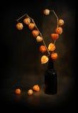 Modest still-life in black tones Royalty Free Stock Photo