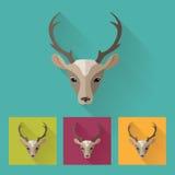 Modieus hertenhoofd Dierlijk portret met vlak ontwerp Vector illustratie Royalty-vrije Stock Fotografie