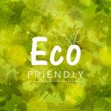 Modieus patroon voor Vriendschappelijke Eco Royalty-vrije Stock Afbeeldingen