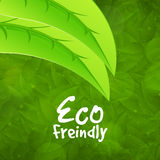 Modieus patroon voor Vriendschappelijke Eco Stock Afbeelding