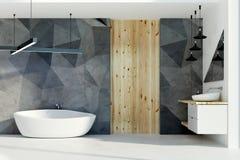 Modieuze badkamers met zonlicht stock illustratie
