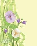 Modieuze bloemenachtergrond Stock Foto's
