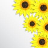 Modieuze creatieve moderne abstracte bloemen backgroun Royalty-vrije Stock Foto