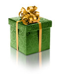 Modieuze groene huidige doos Stock Foto
