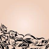 Modieuze Huwelijksachtergrond in beige en ecru, met zwarte bloemenornamenten Stock Foto's