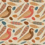 Modieuze kaart met leuke vogels en veren in heldere kleuren Stock Afbeelding