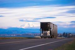 Modieuze klassieke semi vrachtwagen voor vervoer van luxeauto's Royalty-vrije Stock Afbeeldingen
