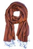 Modieuze vrouwen` s sjaal Royalty-vrije Stock Foto