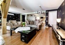 Modieuze woonkamer stock afbeeldingen