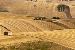 Modific il terrenoare in Basilicata (Italia) all'estate Immagine Stock Libera da Diritti