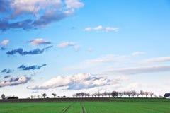 Modific il terrenoare con gli acri, gli alberi e le nubi scure Immagine Stock