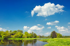 Modific il terrenoare con le acque di inondazione del fiume di Narew, Polonia Fotografia Stock Libera da Diritti