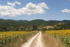 Modific il terrenoare fra il Lazio e l'Umbria Fotografia Stock Libera da Diritti