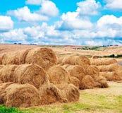 Modific il terrenoare la vista di un campo dell'azienda agricola con i raccolti raccolti Fotografia Stock