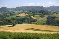 Modific il terrenoare nel Oltrepo Pavese (Italia) Fotografia Stock