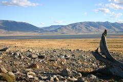 Modific il terrenoare nel patagonia Immagine Stock