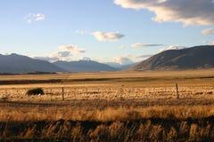 Modific il terrenoare nel patagonia Fotografie Stock
