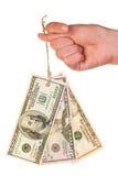 Modifica delle banconote del dollaro sul pollice Fotografia Stock
