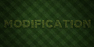 MODIFICATION - fresh Grass letters with flowers and dandelions - 3D rendered royalty free stock image. Can be used for online banner ads and direct mailers Royalty Free Stock Photos