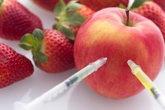 Modified food, fruits,apple and strawberries with punched needles and syringes. / isolatet on a white background Royalty Free Stock Photos