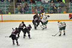 modig hockeyis för framsida av Arkivbilder
