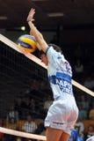 modig innsbruck kaposvar volleyboll Royaltyfri Bild