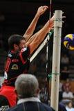 modig kaposvar volleyboll zagreb Fotografering för Bildbyråer