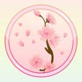 Modig symbol med Sakura Flower Royaltyfri Fotografi