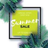 Modische Sommerschlussverkauf-Schablonenfahne Tropische Palmblätter der Papierschnitt-Kunst, Anlagen exotisch hawaiianer Raum für stock abbildung