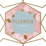 Modisches Blumen-Vektor-Design Pastellpfingstrose mit goldenem abstraktem Hintergrund Stockfotos