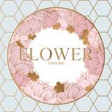 Modisches Blumen-Vektor-Design Pastellpfingstrose mit goldenem abstraktem Hintergrund Stockbilder
