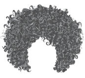 Modisches gelocktes graues Haar Realistisches 3d kugelförmige Frisur stock abbildung