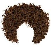 Modisches gelocktes rotes Haar Realistisches 3d kugelförmige Frisurrothaarige Art und Weiseart stockfotografie